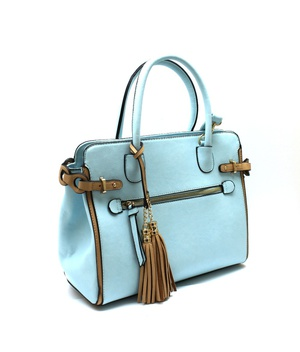 Tassel Accent Two-Tone Trim Satchel bag